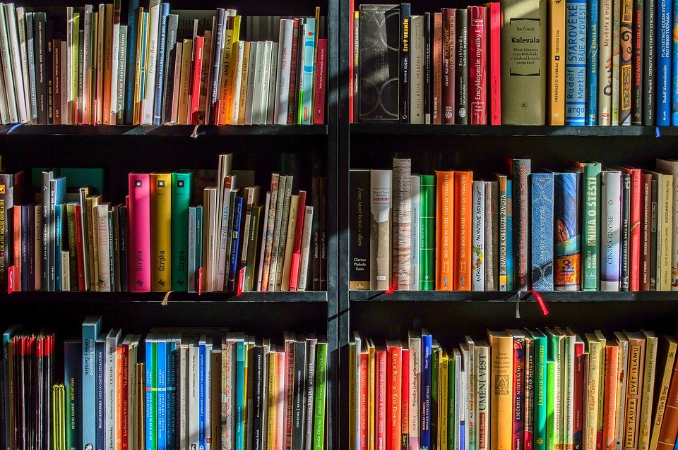 books-1204029_960_720.webp